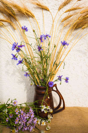 Bouquet of cornflowers and rye in a jug 스톡 콘텐츠
