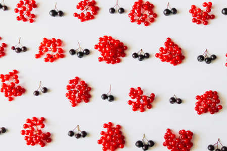 Pattern from fresh red and black berries isolated on white background.