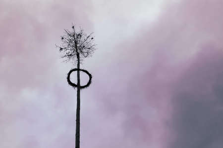 Maypole on cloudy sky, traditional feast in Czech Republic
