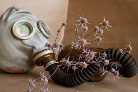 Gas mask on a globe and a dry thorn. Global environmental issues Archivio Fotografico