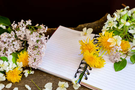 Apple tree dandelion lilac flowers and notebook. Фото со стока