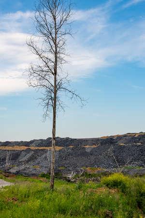 Dumps of waste rock in coal mining