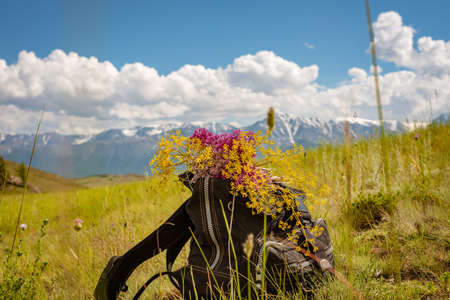 Backpack with a bouquet of flowers during a halt in the mountains Stock Photo