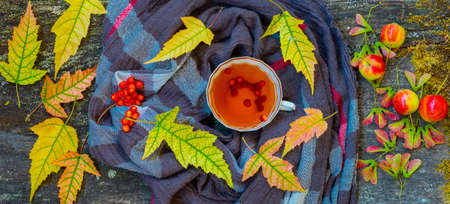 Autumn still life with cup of tea, warming scarf and colorful leaves over rustic wooden background 免版税图像
