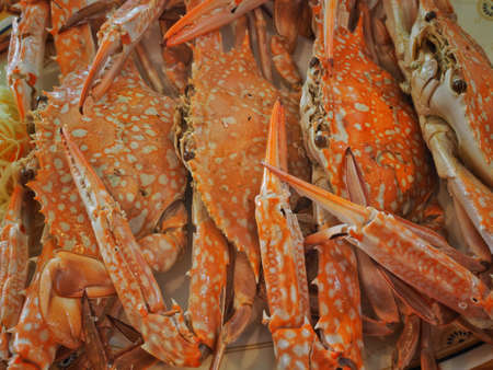 Horse Crab Steam Thai Style Banco de Imagens