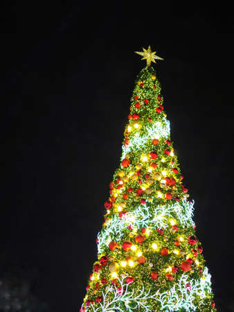 Big Christmas Tree lighting at night in Christmas Festival with black background. Can use for Background or add your text to copy space. Stock Photo