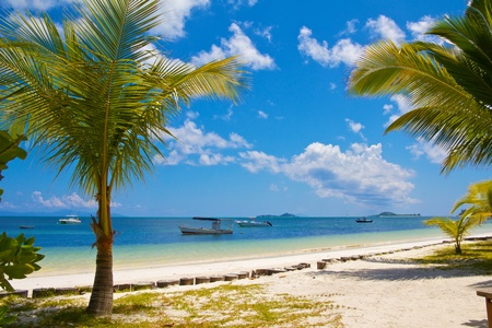 View on boats anchored in the shallow, clear waters of Praslin island, Seychelles photo