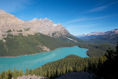 Amazing view on turquoise Peyto Lake, Canada