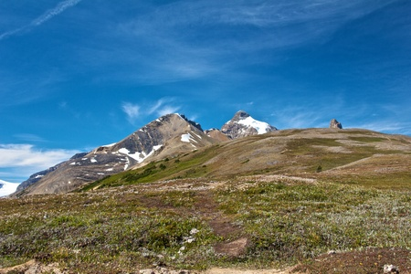 Beautiful meadow on famous Parker Ridge Trail, Canada Stock Photo