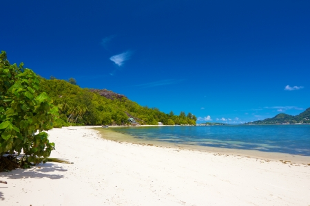 Beautiful white sands beach of Cerf island bay, Seychelles, with palm trees and a rocky hill photo