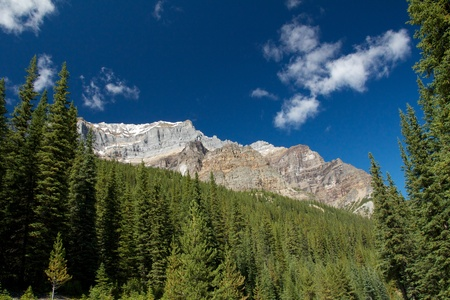 Rocky Mountains rim towering over a green forest at Moraine Lake, Alberta, Canada