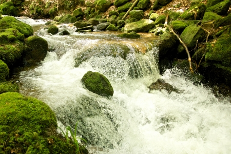 Brook full of mossy rocks at Gertelbach waterfalls, Black Forest, Germany Stock Photo