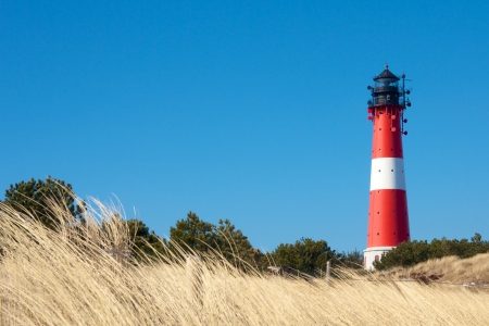 Small lighthouse against a clear blue sky with a dune full of beach grass