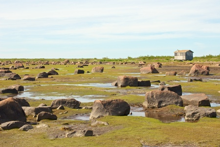View over the stone desert of Hudson Bay, Canada, during low tide with rocks and stones in the tidal pools and a cabin in the background photo
