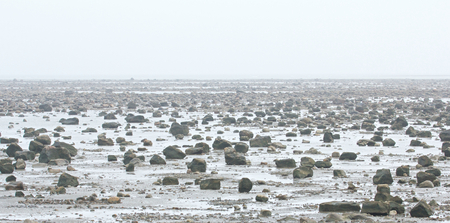 View over the stone desert of Hudson Bay, Canada, during low tide with rocks and stones in the tidal pools and a mysterious haze over the landscape photo