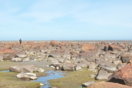 View over the stone desert of Hudson Bay, Canada, during low tide with rocks and stones in the tidal pools and a man walking through photo