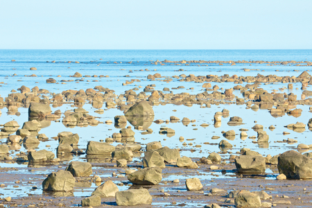 View over the stone desert of Hudson Bay, Canada, during low tide with rocks and stones in the tidal pools photo