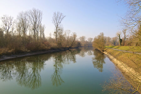 Quiet canal in the Rheinauen nature reserve close to the River Rhine, with trees reflecting in the water photo