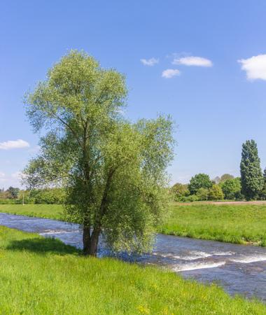 floodplain: View along the green meadows at Dreisam river, Freiburg, Germany