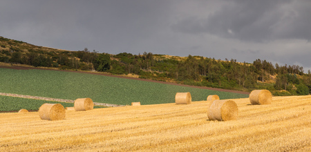Hay bales on fields in the wonderful landscape of Perthshire, Scotland photo