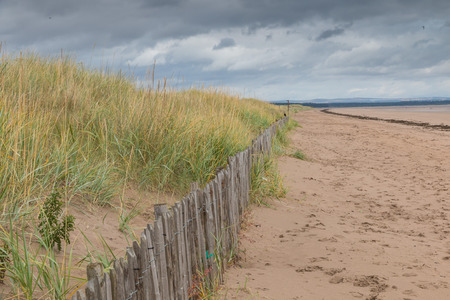 andrews: Dunes and beach grass behind a wooden fence to protect the beach of St Andrews, Scotland, from erosion