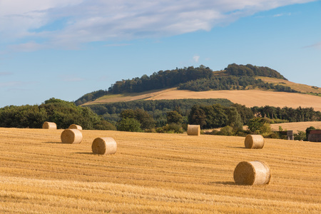 Hay bales on fields in the wonderful landscape of Perthshire, Scotland