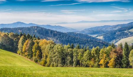 Blick auf einen schönen und romantischen Schwarzwald Wiese, HDR-Version