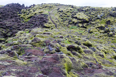 Mysterious mossy Eldhraun lava fields in southern Iceland