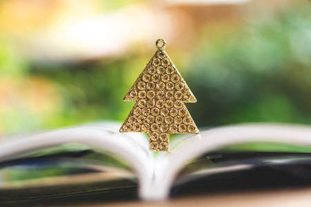 Golden Christmas tree for Christmas decorations and books