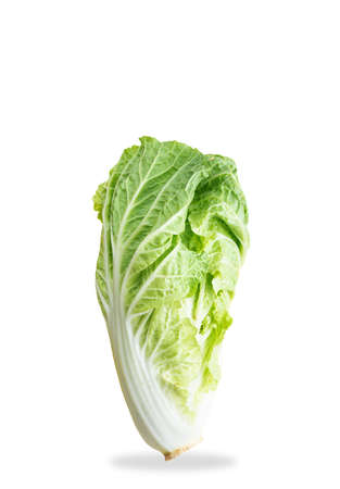 Isolate Chinese cabbage on a white background.