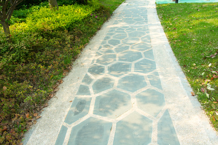 footpath in the park photo