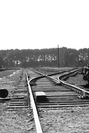 enters: The train track that enters the death camp Auschwitz, Poland.  Stock Photo