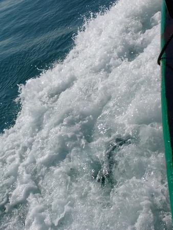 wake: Water wake