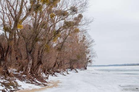 dnipro: winter landscape in Ukraine over river Dnipro