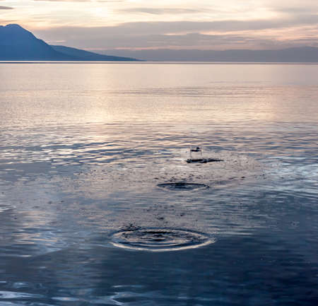 Spots from stone on water surface with sunset behind Stock Photo