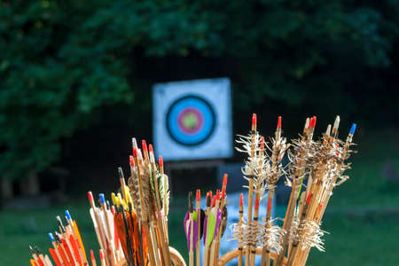 archery arrows and sport aim for exercises Stok Fotoğraf