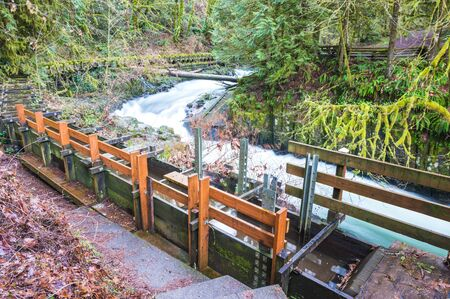 tranfer: millrace  in old grist mill,Washington,usa.