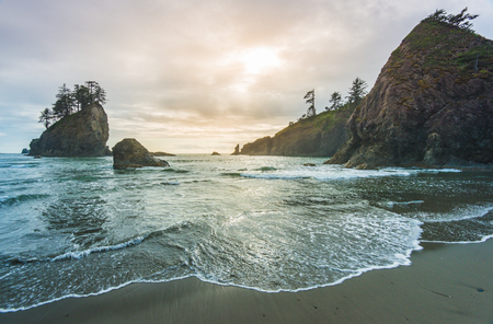 olympic national park: beautiful sunset view in mt Olympic national park,Washington,usa.