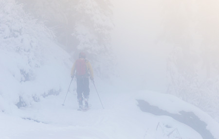 a man in snow forest with fog in mt Rainier National park,Washington,usa.