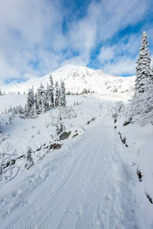 a path cover with snow in paradise area,scenic view of mt Rainier National park,Washington,USA..
