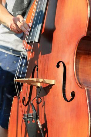 cello double bass played photo