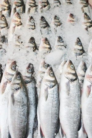 Fish at fishmongers in row, row of trout in line at fishmonger on ice crushed  Stock Photo