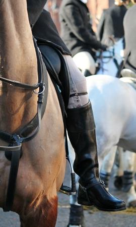 weald: Huntsman boot on horse