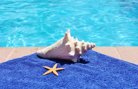 Swimming pool towel and shell photo