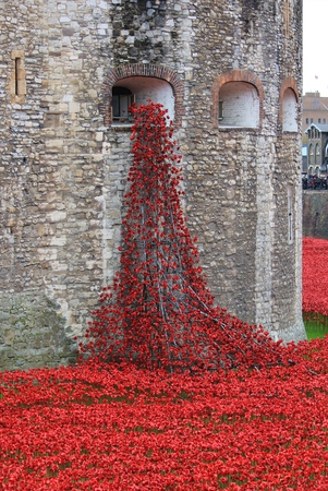 heros: London, United Kingdom - 28th September 2014: Almost 900,000 ceramic poppies are installed at The Tower of London to commemorate Britains involvement in the First World War. Editorial