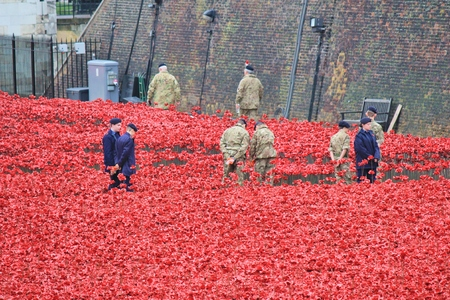 involvement: London, United Kingdom - 28th September 2014: Almost 900,000 ceramic poppies are installed at The Tower of London to commemorate Britains involvement in the First World War. Editorial
