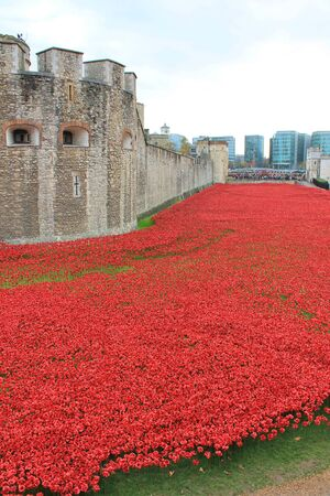 London, United Kingdom - 13 August 2014: Almost 900,000 ceramic poppies are installed at The Tower of London to commemorate Britain\