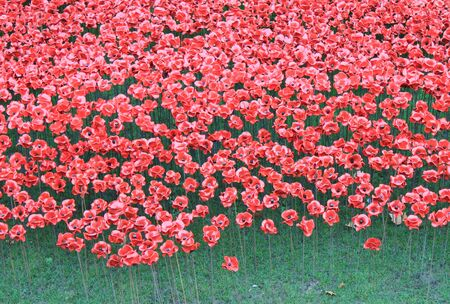 London, United Kingdom - 13 August 2014: Almost 900,000 ceramic poppies are installed at The Tower of London to commemorate Britain photo