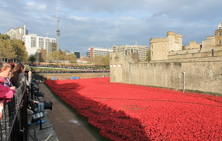 London, United Kingdom - 13 August 2014: Almost 900,000 ceramic poppies are installed at The Tower of London to commemorate Britain
