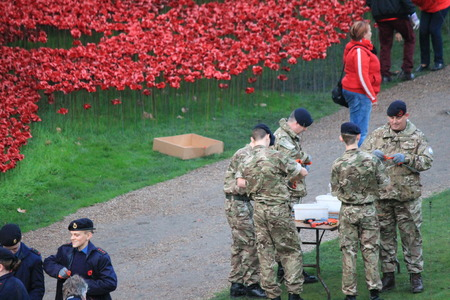 Soldiers Planting ceramic poppies at Tower Of London